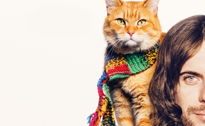 "International Cat Day: ""A spasso con Bob"""